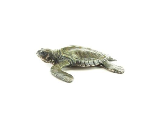 Bronze Baby Sea Turtle Sculpture-2