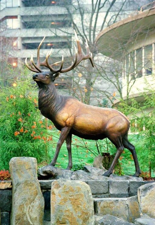 Bronze Bull Elk Sculpture-1