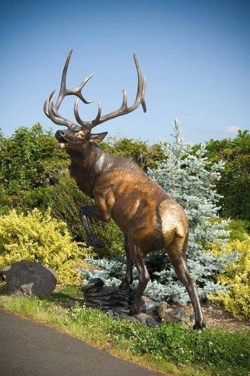 Bronze Bull Elk Sculpture - Challenge Accepted-2