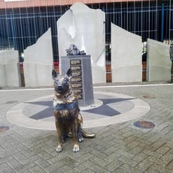 Bronze German Shepherd Sculpture-1