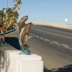 Bronze Rainbow Trout Pair Sculpture-2