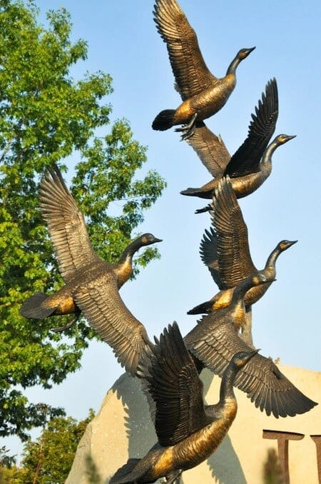 Tualatin Geese Entryway-2