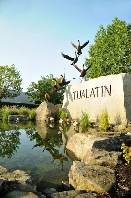 Tualatin Geese Entryway